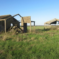 War Sheds - Whitehall Farm