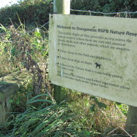 Dungeness Nature Reserve - Forty Acre Farm