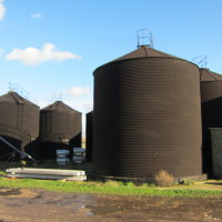 Grain Silos - Forty Acre Farm