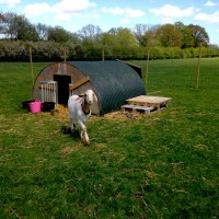 Brick House Farm - The goats