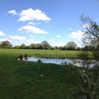 Brick House Farm - pasture and lake