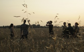 Fashion shoot in the barley field - Whitehall Farm