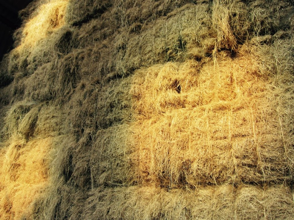 Dappled straw stack - Hare Farm