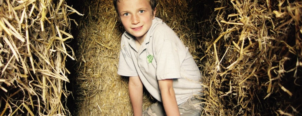 Straw Fort - Hare Farm