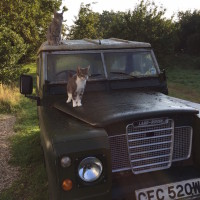 Landrover at Lidham Hill Farm
