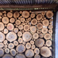 Quarrenden Farm log wall