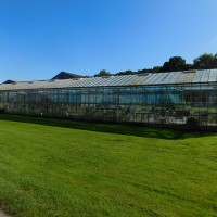 Old House Farm greenhouse