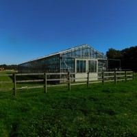 Old House Farm greenhouse end
